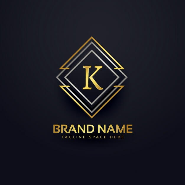 Professional Logo Example 2